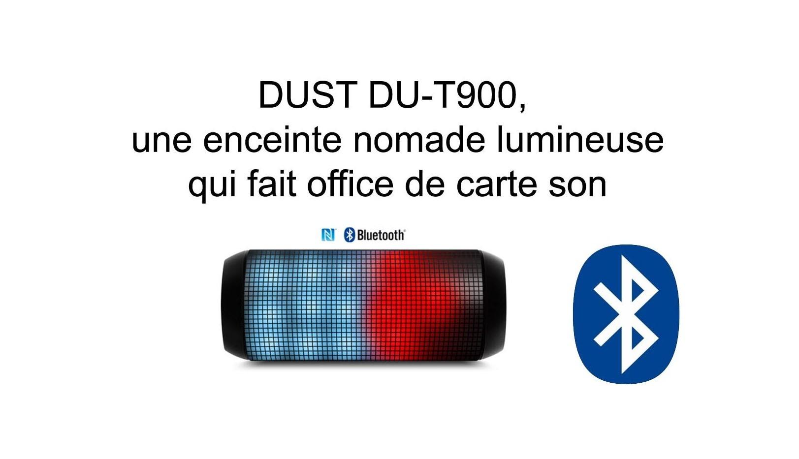 Enceinte DUST DU-T900